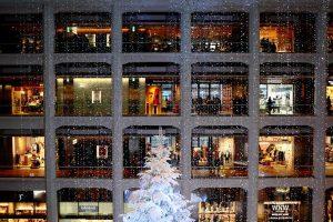 ventana_nevada
