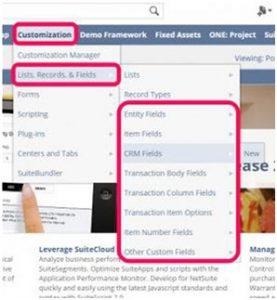 personalizar_lead_crm_netsuite
